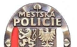Výroční zpráva o činnosti městské policie (2018)