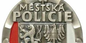 Výroční zpráva o činnosti městské policie za rok 2019